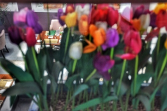 The railings had the most beautiful floral arrangements of colors.